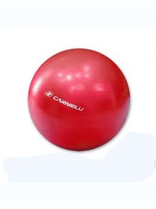 GYMBALL 55